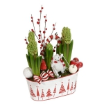 blooming-plants-new-year-decoration1-5