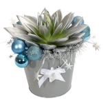 blooming-plants-new-year-decoration2-4