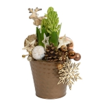 blooming-plants-new-year-decoration3-4