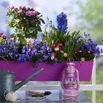 blue-flowers-creative-ideas-palettes6-2.jpg