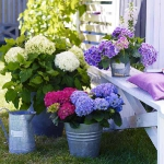 blue-flowers-creative-ideas-palettes7-4.jpg