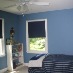 blue-jeans-color-inspire-wall9.jpg