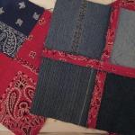 blue-jeans-pillows-quilt-contrast11.jpg
