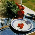 blue-jeans-table-cloth2.jpg