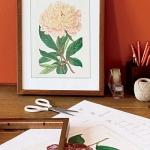 botanical-print-ideas8.jpg
