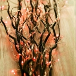 branches-new-year-ideas6-3.jpg