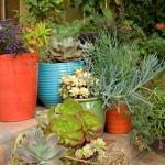bright-nooks-in-garden19.jpg