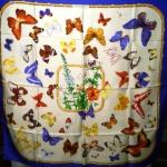 butterfly-interior-ideas2-8.jpg