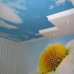 ceiling-ideas-in-kidsroom-nature1-1.jpg