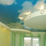 ceiling-ideas-in-kidsroom-nature1-3.jpg