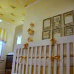 ceiling-ideas-in-kidsroom-nature4-2.jpg