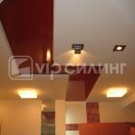ceiling-vipceiling16.jpg