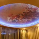 ceiling-vipceiling6.jpg