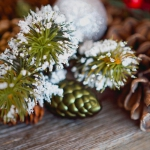 christmas-country-charm-table-setting-2-ways1-6