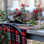 christmas-cranberry-and-red-berries-decorating-combo1-6.jpg