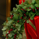 christmas-cranberry-and-red-berries-decorating-combo4-2.jpg