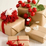 christmas-cranberry-and-red-berries-decorating-misc3-3.jpg