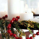 christmas-cranberry-and-red-berries-decorating-shape2-1.jpg