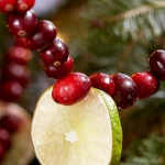 christmas-cranberry-and-red-berries-decorating-shape2-3.jpg