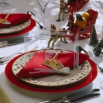 christmas-decor-napkin1-7.jpg