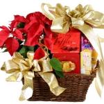 christmas-poinsettia-gift-idea3.jpg