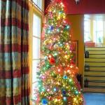 christmas-tree5.jpg