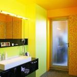 colorful-combo-bathroom25.jpg