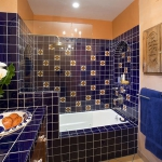 colorful-combo-bathroom26.jpg