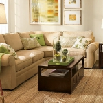 combo-green-and-brown-livingroom10.jpg