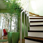 combo-green-and-brown-hallway1.jpg