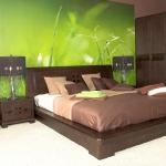 combo-green-and-brown-bedroom4.jpg