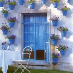 combo-blue-n-white15.jpg
