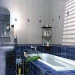 combo-blue-n-white-in-bathroom3.jpg