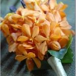 combo-turquoise-tangerine-event5.jpg