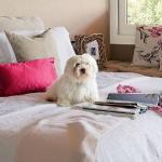 comfortable-small-bedrooms-15-ideas4-3.jpg