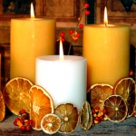 creative-ideas-for-candles-nature18.jpg