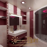 creative-storage-in-bathroom-project24.jpg