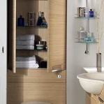 creative-storage-in-bathroom-shelves10.jpg