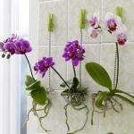 creative-vases-ideas1-10.jpg