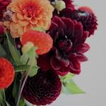 dahlias-bouquets-details2-3.jpg