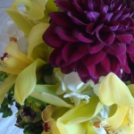 dahlias-bouquets-in-different-shades2-3.jpg