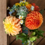 dahlias-bouquets-in-different-shades4-7.jpg