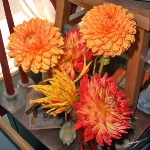dahlias-bouquets-in-different-shades4-9.jpg