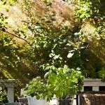 danish-country-homes-photographer-view1-21.jpg