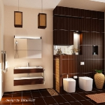 digest109-dark-brown-in-bathroom8-1.jpg