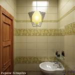 digest65-bathroom-in-eco-style5.jpg