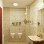 digest65-bathroom-in-eco-style16-3.jpg