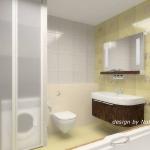 digest65-bathroom-in-eco-style19-3.jpg