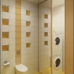 digest65-bathroom-in-eco-style7-2.jpg