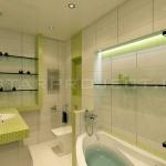 digest65-bathroom-in-eco-style9-1.jpg